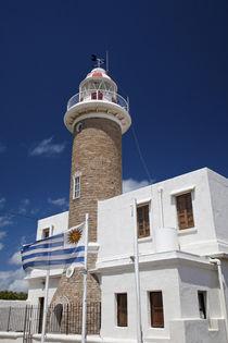 Punta Brava lighthouse von Danita Delimont