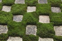 Garden by Danita Delimont