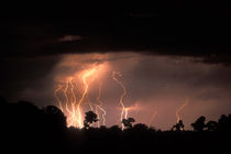 Lightning fills sky over Khwai River at end of dry season in Okanvango Delta von Danita Delimont