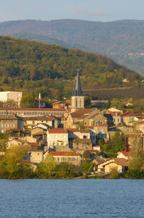 Town near Vienne von Danita Delimont