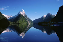 Fiordland National Park by Danita Delimont