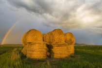Briiliant rainbow over hay bales along the Judith Mountain Range near Lewistown Montana by Danita Delimont