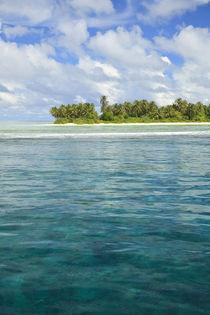 Indian Ocean von Danita Delimont