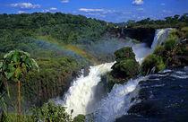 South America; Latin America; Argentina; Brazil; Iguacu Falls by Danita Delimont