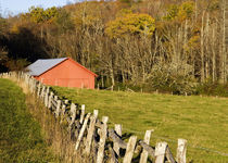 Red barn and fencerow along the Blue ridge Parkway near Blowing Rock North Carolina by Danita Delimont