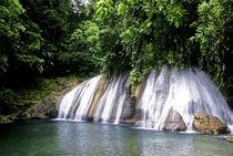 Jamaica von Danita Delimont