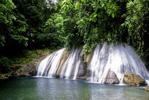 Jamaica by Danita Delimont