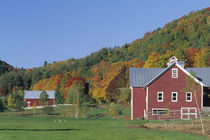 Red Barn and fall foliage by Danita Delimont