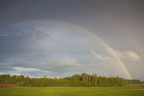 Spring field and rainbow by the A3 highway by Danita Delimont