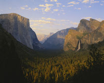 Yosemite valley and Bridal veil falls von Danita Delimont