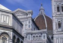 Duomo detail von Danita Delimont