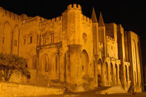 Papal Palace at night by Danita Delimont