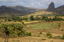Ethiopia by Danita Delimont