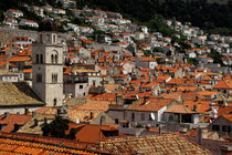 Medieval walled city of Dubrovnik von Danita Delimont