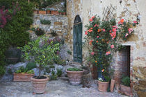 Potted plants decorate a patio in a Tuscany village by Danita Delimont