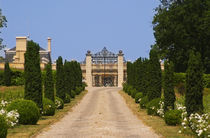 The road lined with bushes leading up to the gate Saint Emilion Bordeaux Gironde Aquitaine France von Danita Delimont