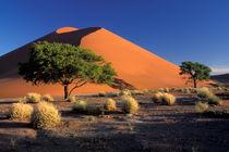 Sossosvlei dunes von Danita Delimont