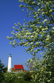 Tawas Lighthouse with wild cherry trees in bloom von Danita Delimont