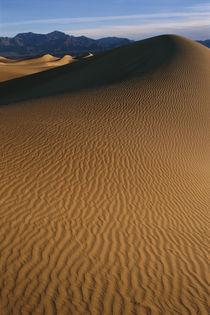 Mesquite Flat Sand Dunes von Danita Delimont