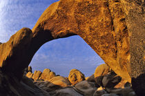 Arch Rock at Joshua Tree National Park in California by Danita Delimont