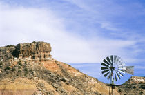 Texas Windmill and cliffs of Palo Duro Canyon State Park by Danita Delimont