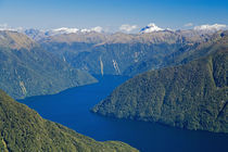 New Zealand - aerial by Danita Delimont