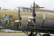 Military airshow von Danita Delimont