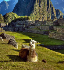 Peru by Danita Delimont