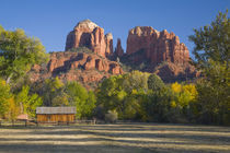Red Rock Crossing; Cathedral Rock and trees with fall color von Danita Delimont