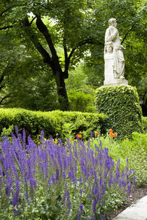 Royal Botanic Garden aka Real Jardin Botanico von Danita Delimont
