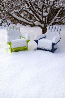 Snow Covered Adirondack Chairs by Danita Delimont