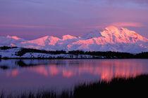 Denali in late evening alpenglow von Danita Delimont