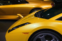 Lamborghini Sportscars von Danita Delimont