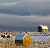 Rustic barn and hay bales after a fresh snow in the Mission Valley of Montana by Danita Delimont