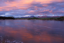 Yukon Territory by Danita Delimont