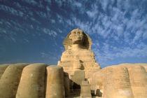 Sphinx by Danita Delimont