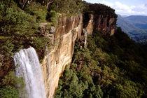 Fitzroy Falls von Danita Delimont