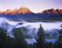 The Grand Tetons seen from the Snake River Overlook at dawn by Danita Delimont