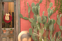 Tucson: Presidio Historic District House Detail von Danita Delimont