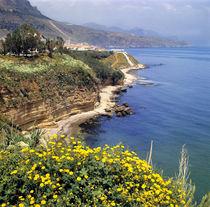 Offers few beaches von Danita Delimont