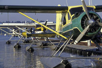 Seaplanes docked on Lake Washington in Kenmore area by Danita Delimont