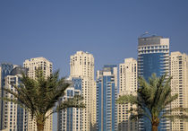 Towers of Jumeirah Beach Residence with two palm trees in front by Danita Delimont