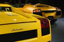 Lamborghini Sportscars by Danita Delimont
