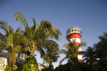 Setting sun lights lighthouse exterior and palm trees at Our Lucaya Resort by Danita Delimont