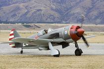 Lavochkin La-9 - Russian fighter plane von Danita Delimont