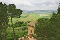 View of the Tuscany countryside by Danita Delimont