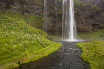 People on trail behind Seljalandsfoss Waterfall by Danita Delimont