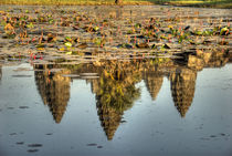 Reflection of temple ruins in pond by Danita Delimont