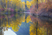 With reflected autumn color by Danita Delimont
