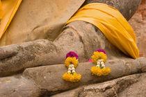 Buddha at Ayutthaya by Danita Delimont